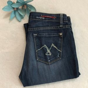 Vigoss Bootcut Distressed Jeans Red Detail